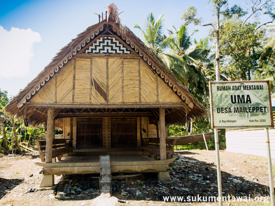 Traditional Mentawai Uma built for the community in Maileppet village